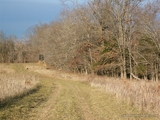 Illinois hunting property