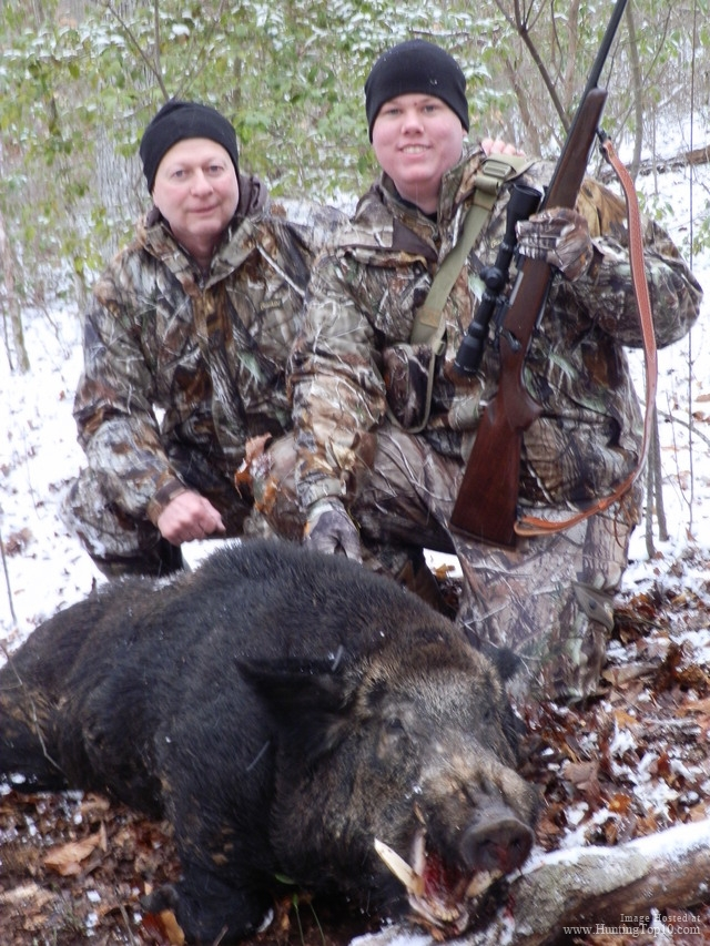 Boar Hunting in Tennessee