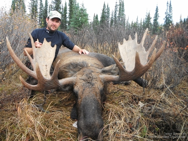 Canadian Moose Hunting