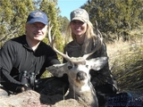 New Mexico Mule Deer Hunt