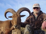 New Mexico Barbary Sheep hunt