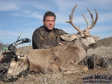 New Mexico Archery Mule Deer