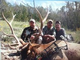 Big Game Elk Hunting In New Mexico