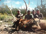 Bow Hunting Elk New Mexico.