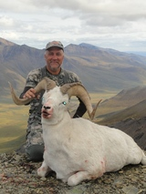 Brooks Range Dall Sheep Guide