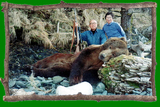 Brown bear hunts in Alaska