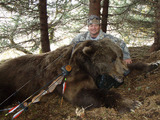 Kodiak Bear Hunting Alaska