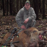 Wild Boar Hunting at it