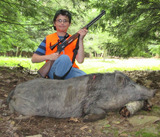 Pennsylvania Boar Hunts, Tioga Boar Hunting Ranch