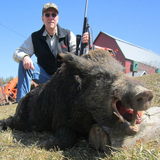 Boar Hunting in Pennsylvania.