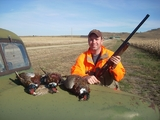 Upland Game Bird Hunt, Pheasant Hunting South Dakota.