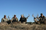 Trophy Buck Hunts Texas.