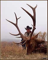 Elk Hunting Wyoming, Guided Elk Hunt Wyoming Outfitter