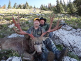 Wyoming Mule Deer Hunting deer