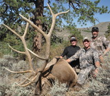 Table Mountain Outfitters, Elk Hunts