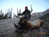 Yellowstone Outfitters, 2011 bull