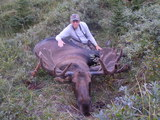 A really nice bull for Allan