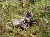 Moose Hunting in Newfoundland