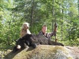 Quebec Bow Hunting Bear.