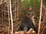 Quebec Black Bear Hunting.