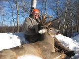 Beautiful Great Northern Whitetail Buck