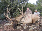 Arizona High Country Outfitter & Guide Service, Elk Hunting