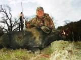 California Boar Huning