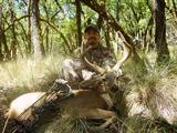 Blacktail Deer hunting in California