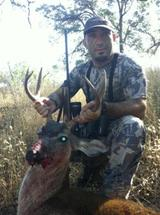Blacktail deer hunt.