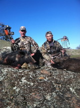 Archery hog combo kill.