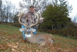 Nice Whitetail Deer Ohio Whitetail Deer Hunting.