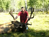 Elk hunt 2011 Bighorn Buck Adventures