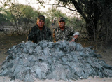 Hunt Argentina, LLC with JJ Caceria Outfitters, Pigeon shooting