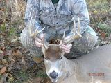 Kentucky Whitetail Deer Hunts