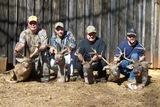 Alabama Bucks