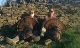 Kentucky Turkey Hunting Outfitters.