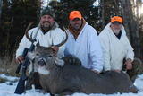 Whitetail deer hunting adventure
