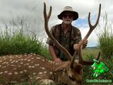 Axis Deer hunting in Hawaii