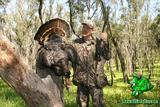 Rio Grande turkey hunts