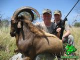 Hawaiian Ibex hunt