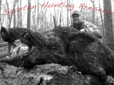 Tennessee Wild Boar Hunting