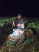 Hog SWAT, 425 Lb Monster!!