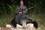 Black bear hunting in Alberta.