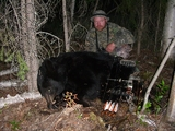 Alberta Archery Black Bear
