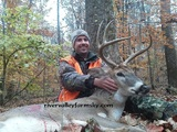 Western Kentucky whitetail buck