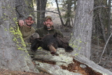 Idaho Bear Hunting Outfitters
