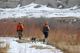 Hunting pheasant in Utah.