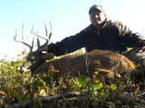Another BBD Buck