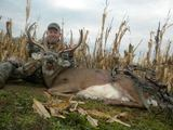 Bow Hunting Whitetails In Ohio.