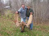Guided Moose Hunting in Ontario - Halleys Camps